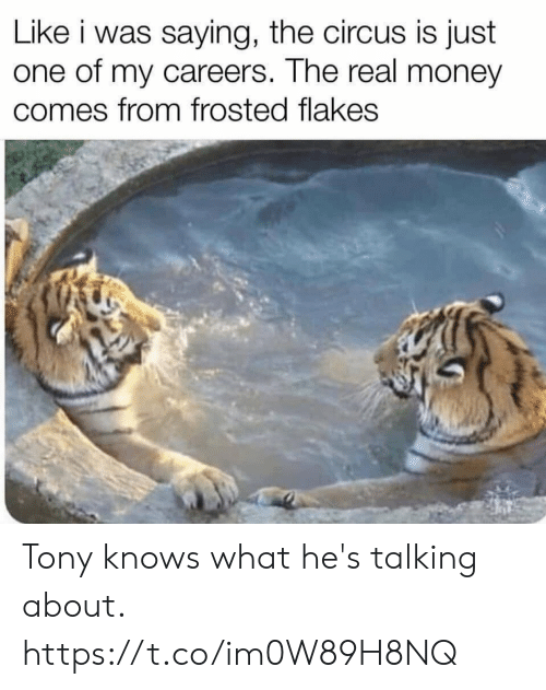 Funny, Money, and The Real: Like i was saying, the circus is just  one of my careers. The real money  comes from frosted flakes Tony knows what he's talking about. https://t.co/im0W89H8NQ