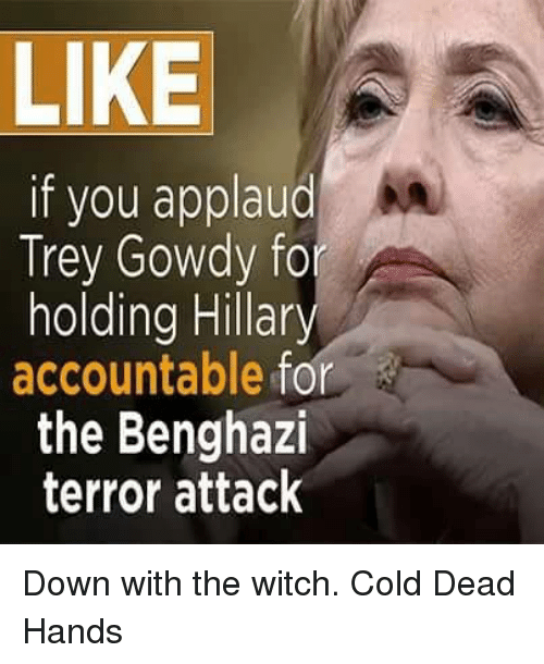 Memes, Cold, and 🤖: LIKE  if you applaud  Trey Gowdy for  holding Hillar  accountable for  the Benghazi  terror attack Down with the witch. Cold Dead Hands