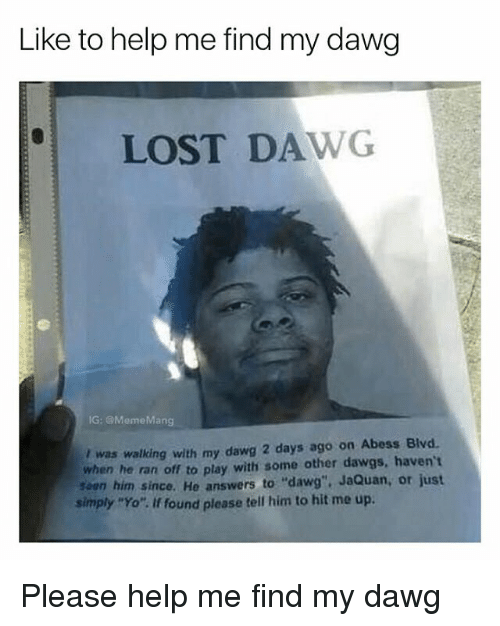 """Mangs: Like to help me find my dawg  LOST DAWG  IG: @Meme Mang  was walking with my dawg 2 days ago on Abess Blvd.  when he ran off to play with some other dawgs, haven't  saen him since. He answers to """"dawg"""". JaQuan, or just  simply """"Yo"""". If found please tell him to hit me up. Please help me find my dawg"""