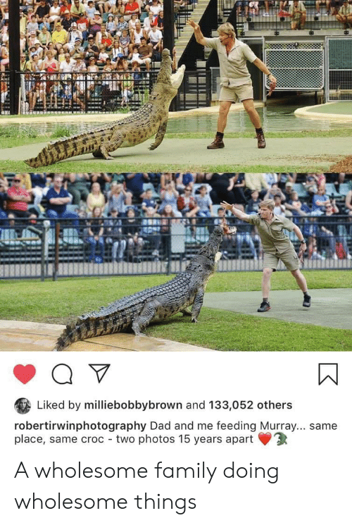 Wholesome Family: Liked by milliebobbybrown and 133,052 others  robertirwinphotography Dad and me feeding Murray... same  place, same croc two photos 15 years apart A wholesome family doing wholesome things
