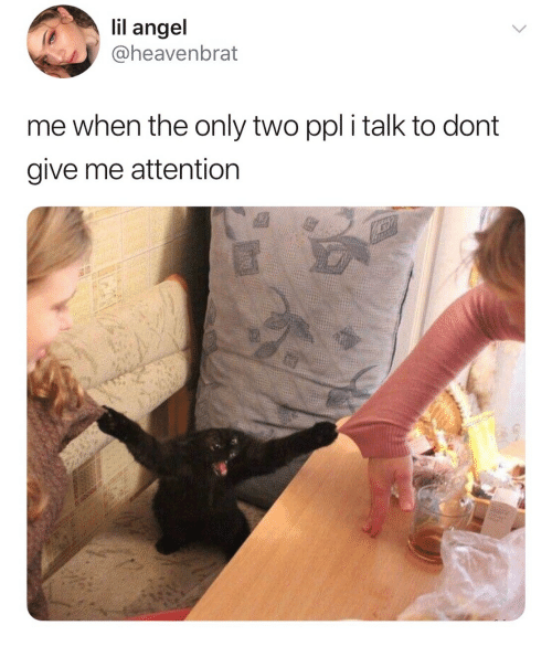 Give Me Attention: lil ange  @heavenbrat  me when the only two ppl i talk to dont  give me attention