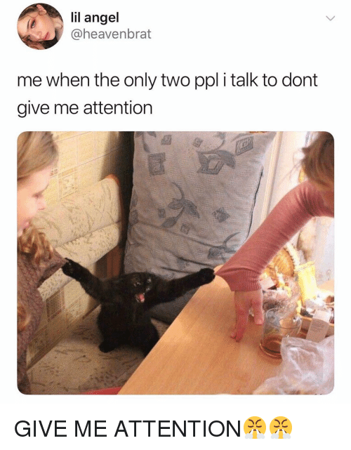 Give Me Attention: lil angel  heavenbrat  me when the only two ppl i talk to dont  give me attention GIVE ME ATTENTION😤😤