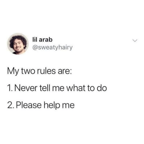 tell-me-what: lil arab  @sweatyhairy  My two rules are:  1. Never tell me what to do  2. Please help me