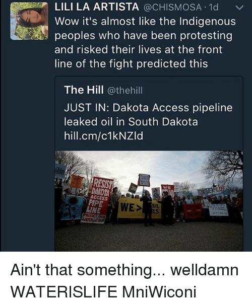 Dakota Access pipeline: LILI LA ARTISTA  @CHISMOSA 1d v  Wow it's almost like the Indigenous  peoples who have been protesting  and risked their lives at the front  line of the fight predicted this  The Hill  @thehill  JUST IN: Dakota Access pipeline  leaked oil in South Dakota  hill.cm/c1kNZld  ACCESS  WE  SIL.  LINE  US Ain't that something... welldamn WATERISLIFE MniWiconi