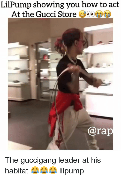 Gucci, Memes, and Rap: LilPump showing you how to act  At the Gucci Store  @rap The guccigang leader at his habitat 😂😂😂 lilpump