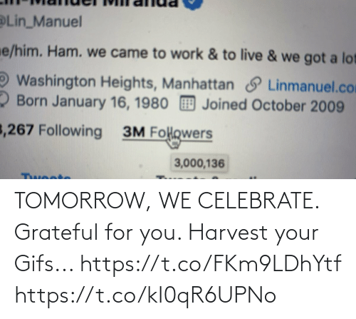 ham: Lin_Manuel  e/him. Ham. we came to work & to live & we got a lot  Washington Heights, Manhattan S Linmanuel.com  2 Born January 16, 1980 Joined October 2009  3,267 Following  3M Folowers  3,000,136  Twoote TOMORROW, WE CELEBRATE.  Grateful for you.  Harvest your Gifs... https://t.co/FKm9LDhYtf https://t.co/kI0qR6UPNo