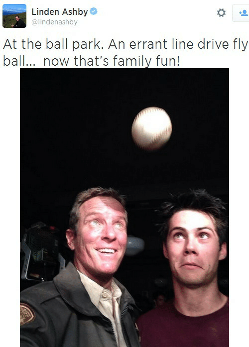 Linden: Linden Ashby  @lindenashby  At the ball park. An errant line drive fly  ball.. now that's family fun!