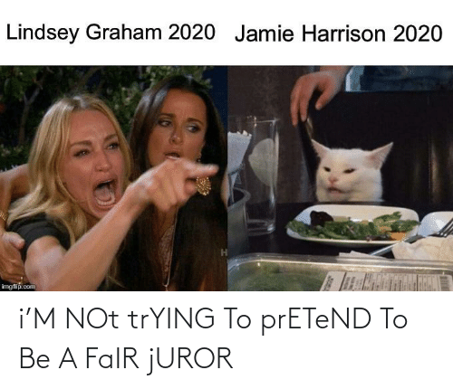 lindsey graham: Lindsey Graham 2020 Jamie Harrison 2020  imgflip.com i'M NOt trYING To prETeND To Be A FaIR jUROR