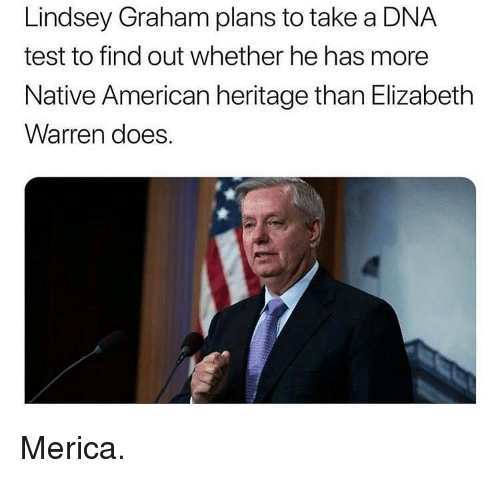 Elizabeth Warren, Memes, and Native American: Lindsey Graham plans to take a DNA  test to find out whether he has more  Native American heritage than Elizabeth  Warren does. Merica.