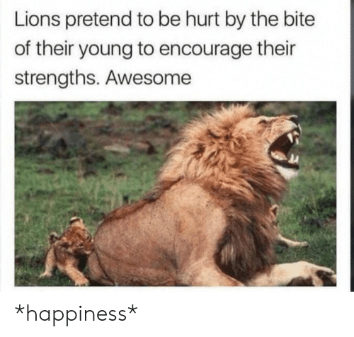 encourage: Lions pretend to be hurt by the bite  of their young to encourage their  strengths. Awesome *happiness*
