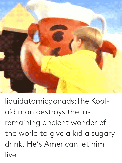 Kool Aid, Tumblr, and American: liquidatomicgonads:The Kool-aid man destroys the last remaining ancient wonder of the world to give a kid a sugary drink.  He's American let him live