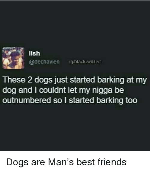 Dogs, Friends, and My Nigga: lish  @dechavien ig:blacktwitter  These 2 dogs just started barking at my  dog and I couldnt let my nigga be  outnumbered so l started barking too <p>Dogs are Man&rsquo;s best friends</p>