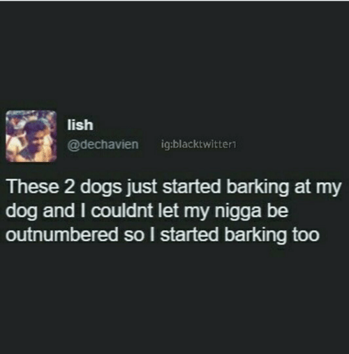 Dogs, My Nigga, and Dog: lish  @dechavien ig:blacktwittern  These 2 dogs just started barking at my  dog and I couldnt let my nigga be  outnumbered so I started barking too
