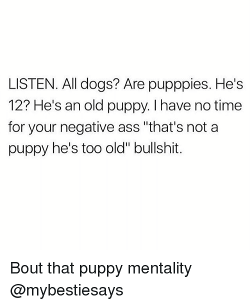 """Bouts: LISTEN. All dogs? Are pupppies. He's  12? He's an old puppy. I have no time  for your negative ass """"that's not a  puppy he's too old"""" bullshit. Bout that puppy mentality @mybestiesays"""