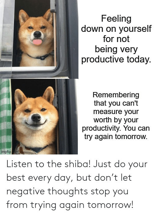 Negative: Listen to the shiba! Just do your best every day, but don't let negative thoughts stop you from trying again tomorrow!