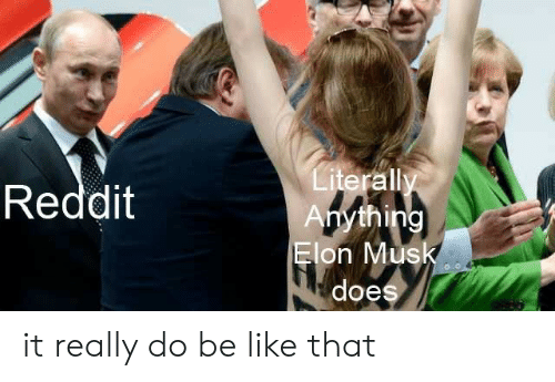 elon musk: Literally  Anything  Elon Musk  Reddit  does it really do be like that