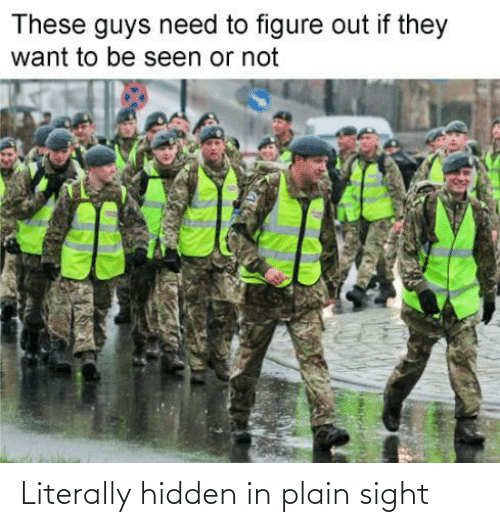 hidden: Literally hidden in plain sight