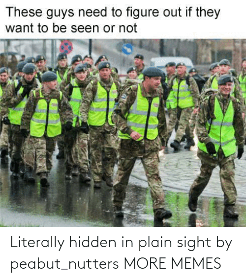 hidden: Literally hidden in plain sight by peabut_nutters MORE MEMES