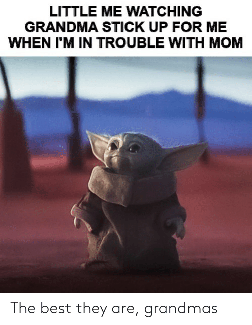 Grandma, Reddit, and Best: LITTLE ME WATCHING  GRANDMA STICK UP FOR ME  WHEN I'M IN TROUBLE WITH MOM The best they are, grandmas