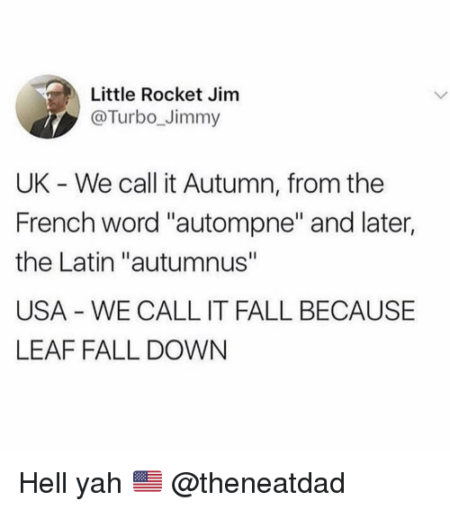 """yah: Little Rocket Jim  @Turbo_Jimmy  UK - We call it Autumn, from the  French word """"autompne"""" and later,  the Latin """"autumnus""""  USA - WE CALL IT FALL BECAUSE  LEAF FALL DOWN Hell yah 🇺🇸 @theneatdad"""