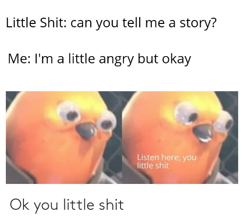 Shit, Okay, and Angry: Little Shit: can you tell me a story?  Me: I'm a little angry but okay  Listen here, you  little shit Ok you little shit
