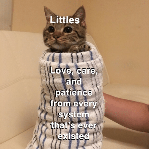 Patience: Littles  Love, care,  and  patience  from every  system  that's ever  existed