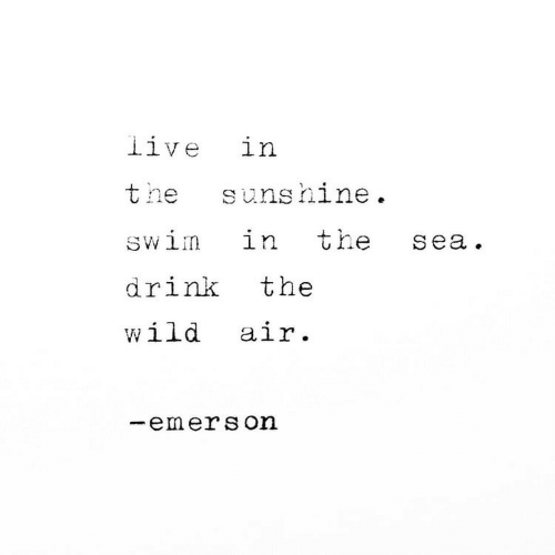 Live, Wild, and Emerson: live in  the  sunshine  the  in  swim  sea.  the  drink  wild air.  emerson