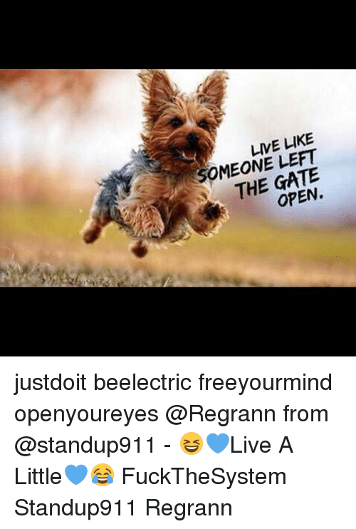 live like someone left the gate open justdoit beelectric