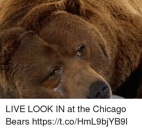 Chicago Bears: LIVE LOOK IN at the Chicago Bears https://t.co/HmL9bjYB9l
