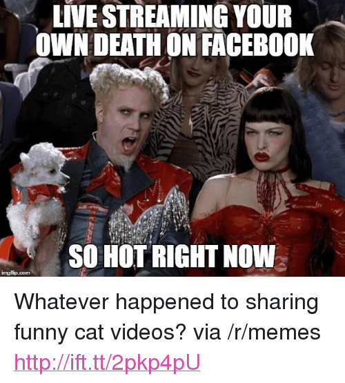 """Live Streaming: LIVE STREAMING YOUR  OWN DEATHON FACEBO0K  SO HOT RIGHT NOW <p>Whatever happened to sharing funny cat videos? via /r/memes <a href=""""http://ift.tt/2pkp4pU"""">http://ift.tt/2pkp4pU</a></p>"""