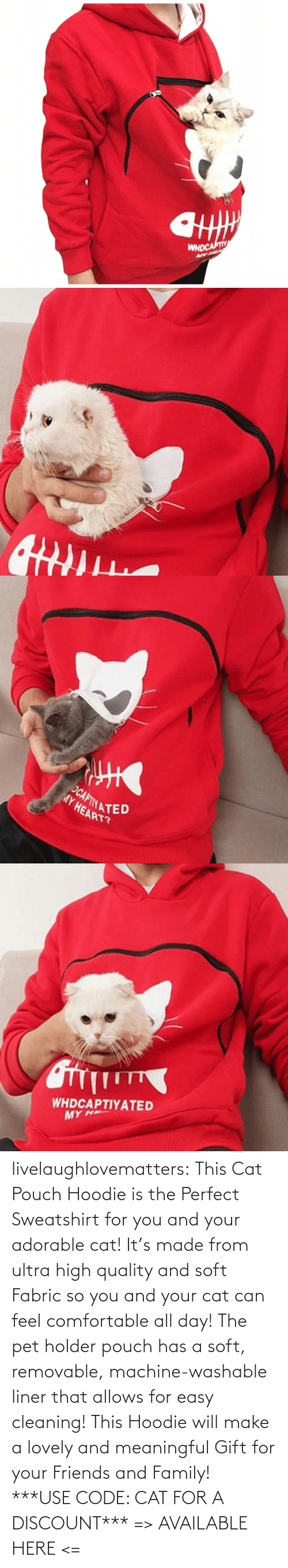 Adorable: livelaughlovematters: This Cat Pouch Hoodie is the Perfect Sweatshirt for you and your adorable cat! It's made from ultra high quality and soft Fabric so you and your cat can feel comfortable all day! The pet holder pouch has a soft, removable, machine-washable liner that allows for easy cleaning! This Hoodie will make a lovely and meaningful Gift for your Friends and Family!  ***USE CODE: CAT FOR A DISCOUNT*** => AVAILABLE HERE <=