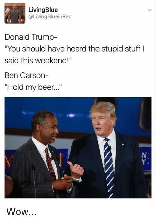 """Donald Trump You: Living Blue  @Living BlueinRed  Donald Trump  """"You should have heard the stupid stuff l  said this weekend!  Ben Carson-  Hold my beer..."""" Wow..."""