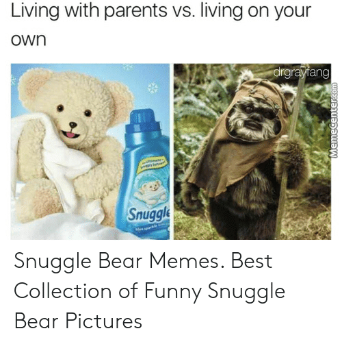 Snuggle Bear Meme: Living with parents vs. living on your  own  drgrayiang  Snuggle Snuggle Bear Memes. Best Collection of Funny Snuggle Bear Pictures