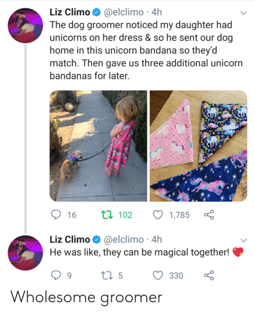 Liz Climo: Liz Climo @elclimo 4h  The dog groomer noticed my daughter had  unicorns on her dress & so he sent our dog  home in this unicorn bandana so they'd  match. Then gave us three additional unicorn  bandanas for later  ti 102  16  1,785  Liz Climo@elclimo 4h  He was like, they can be magical together!  ti5  330  9 Wholesome groomer