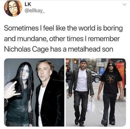 Dank, World, and 🤖: LK  @ellkay  Sometimes I feel like the world is boring  and mundane, other times I remember  Nicholas Cage has a metalhead son