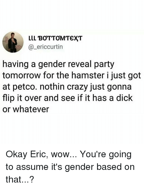 Crazy, Memes, and Party: LLL BOTTOMTEXT  @_ericcurtin  having a gender reveal party  tomorrow for the hamster i just got  at petco. nothin crazy just gonna  flip it over and see if it has a dick  or whatever Okay Eric, wow... You're going to assume it's gender based on that...?