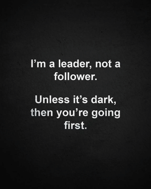 Memes, 🤖, and Dark: l'm a leader, not a  follower.  Unless it's dark,  then you're going  first.