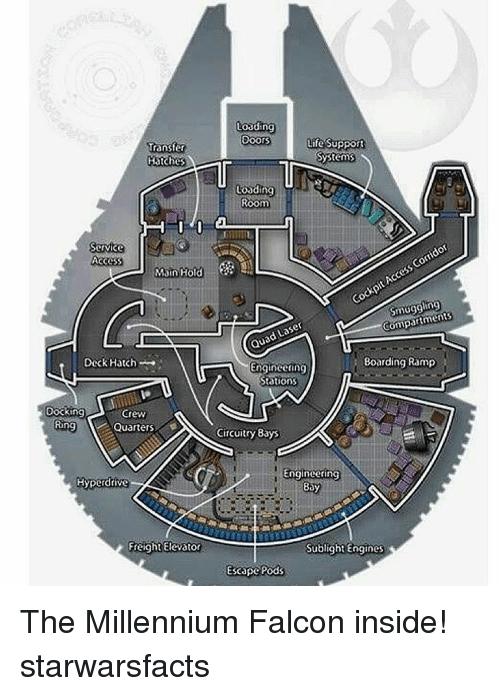 Life, Memes, and Millennium Falcon: Loading  Doors  Life Support  Transfer  Systems  Hatches  r  Loading  Room  Corridor  ccess Cockpit Compartments  Service  Access  Main Hold  Laser  Quad Boarding Ramp  Engineering  Deck Hatch  Stations  Docking  Crew  Ring  Quarters  Circuitry Bays  Engineering  Hyperdrive  Bay  Freight Elevator  Sublight Engines  Escape Pods The Millennium Falcon inside! starwarsfacts