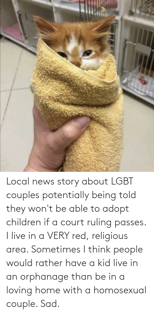 homosexual: Local news story about LGBT couples potentially being told they won't be able to adopt children if a court ruling passes. I live in a VERY red, religious area. Sometimes I think people would rather have a kid live in an orphanage than be in a loving home with a homosexual couple. Sad.
