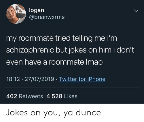 Logan: logan  @brainwxrms  my roommate tried telling me i'm  schizophrenic but jokes on him i don't  even have a roommate Imao  18:12 27/07/2019 Twitter for iPhone  402 Retweets 4 528 Likes Jokes on you, ya dunce