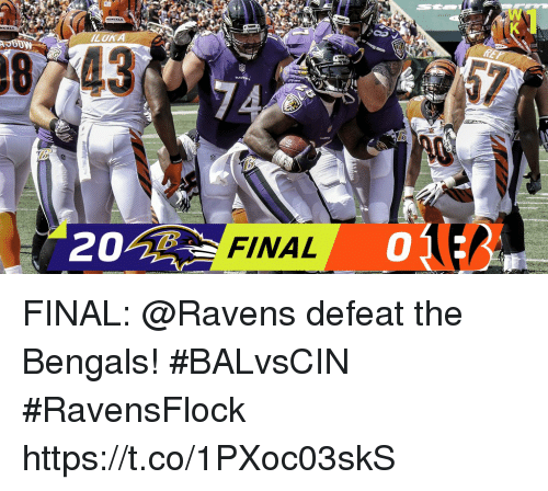 Memes, Bengals, and Ravens: LOK  87743  FINAL  0 FINAL: @Ravens defeat the Bengals! #BALvsCIN #RavensFlock https://t.co/1PXoc03skS