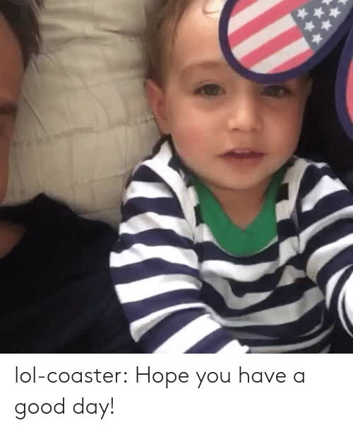 Hope You Have A Good Day: lol-coaster:    Hope you have a good day!
