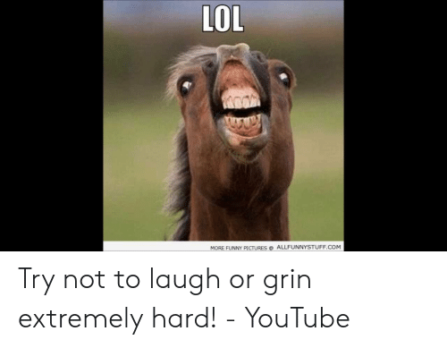 Or Grin: LOL  MORE FUNNY PICTURESALLFUNNYSTUFF.COM Try not to laugh or grin extremely hard! - YouTube