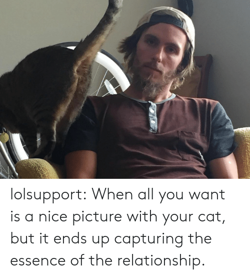 Nice Picture: lolsupport:  When all you want is a nice picture with your cat, but it ends up capturing the essence of the relationship.