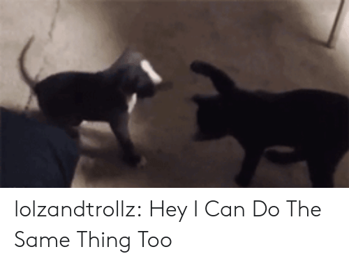 Tumblr, Blog, and Com: lolzandtrollz:  Hey I Can Do The Same Thing Too