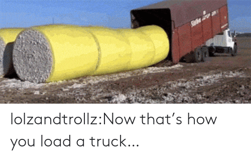 Tumblr, Blog, and How: lolzandtrollz:Now that's how you load a truck…