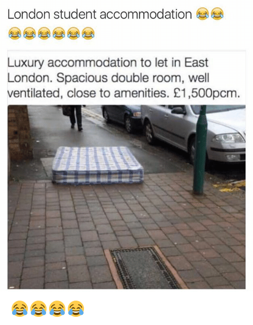 accommodating: London student accommodation  Luxury accommodation to let in East  London. Spacious double room, well  ventilated, close to amenities. E1,500pcm 😂😂😂😂
