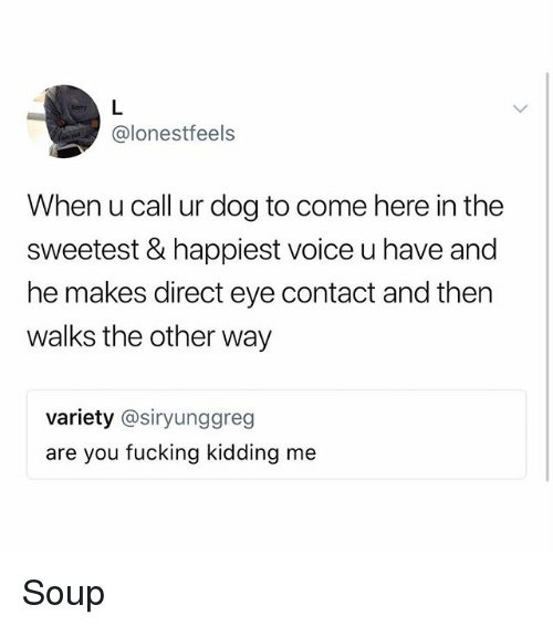 Fucking, Memes, and Voice: @lonestfeels  When u call ur dog to come here in the  sweetest & happiest voice u have and  he makes direct eye contact and then  walks the other way  variety @siryunggreg  are you fucking kidding me Soup