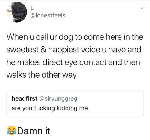 Fucking, Memes, and Voice: @lonestfeels  When u call ur dog to come here in the  sweetest & happiest voice u have and  he makes direct eye contact and then  walks the other way  headfirst @siryunggreg  are you fucking kidding me 😂Damn it