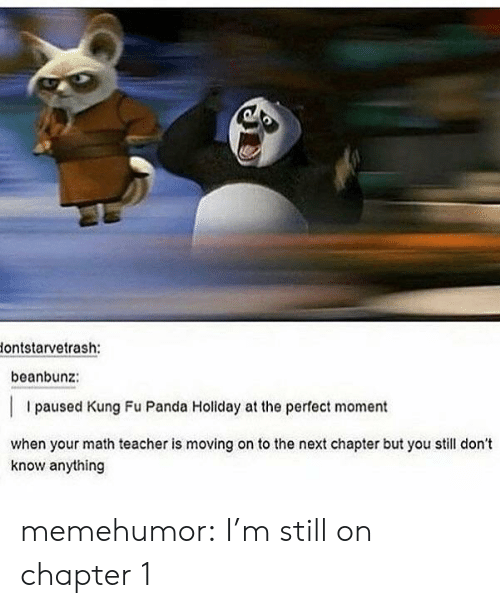 Teacher, Tumblr, and Panda: lontstarvetrash:  beanbunz:  I paused Kung Fu Panda Holiday at the perfect moment  when your math teacher is moving on to the next chapter but you still don't  know anything memehumor:  I'm still on chapter 1